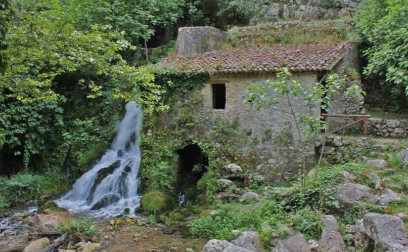 Escursioni all'Oasi WWF Grotte del Bussento a Morigerati